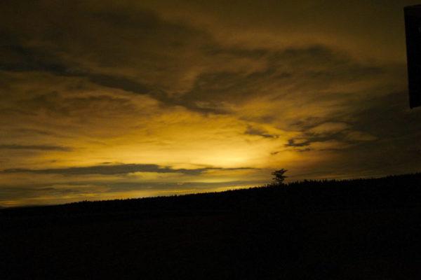 August Nacht im Schwarzwald ©AW-Anja-Bronner